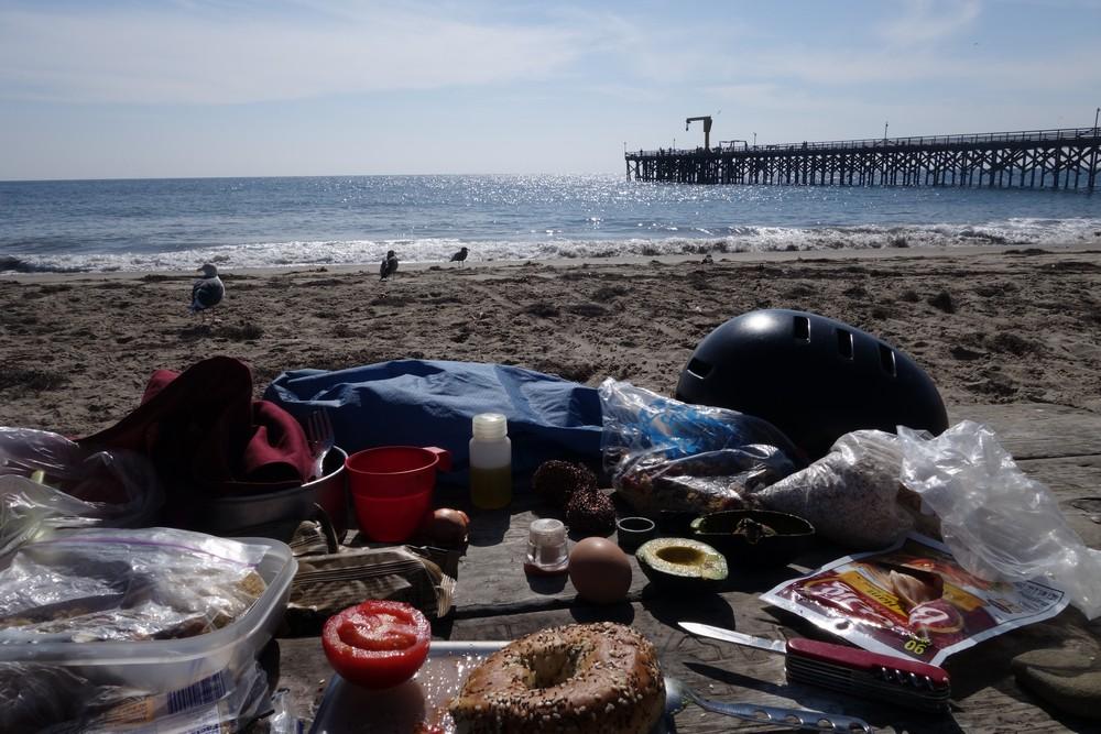 Sunny picnics